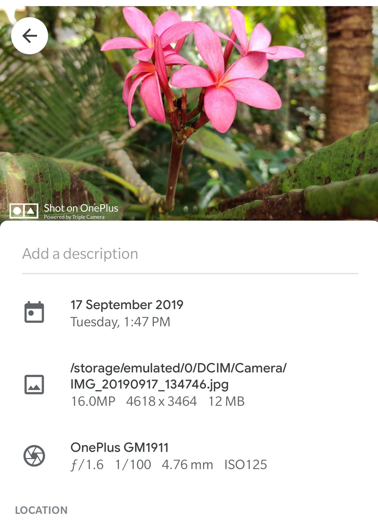 Screenshot_20190917-214734.jpg