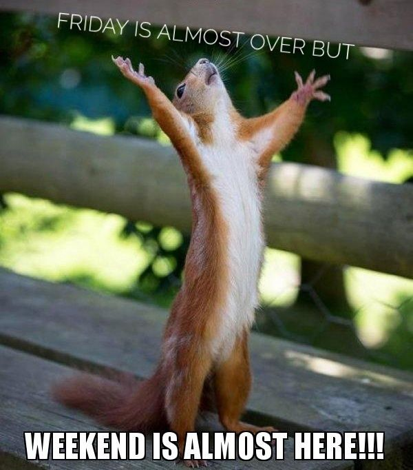 the-weekend-is-p1os9d-01.jpeg