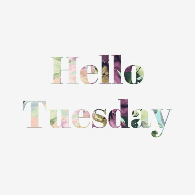 pngtree-plant-hello-tuesday-word-art-hand-painted-illustration-text-effect.jpg