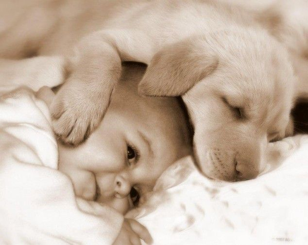 baby-and-puppy--634x506.jpg