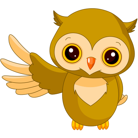 awesome-owl.png