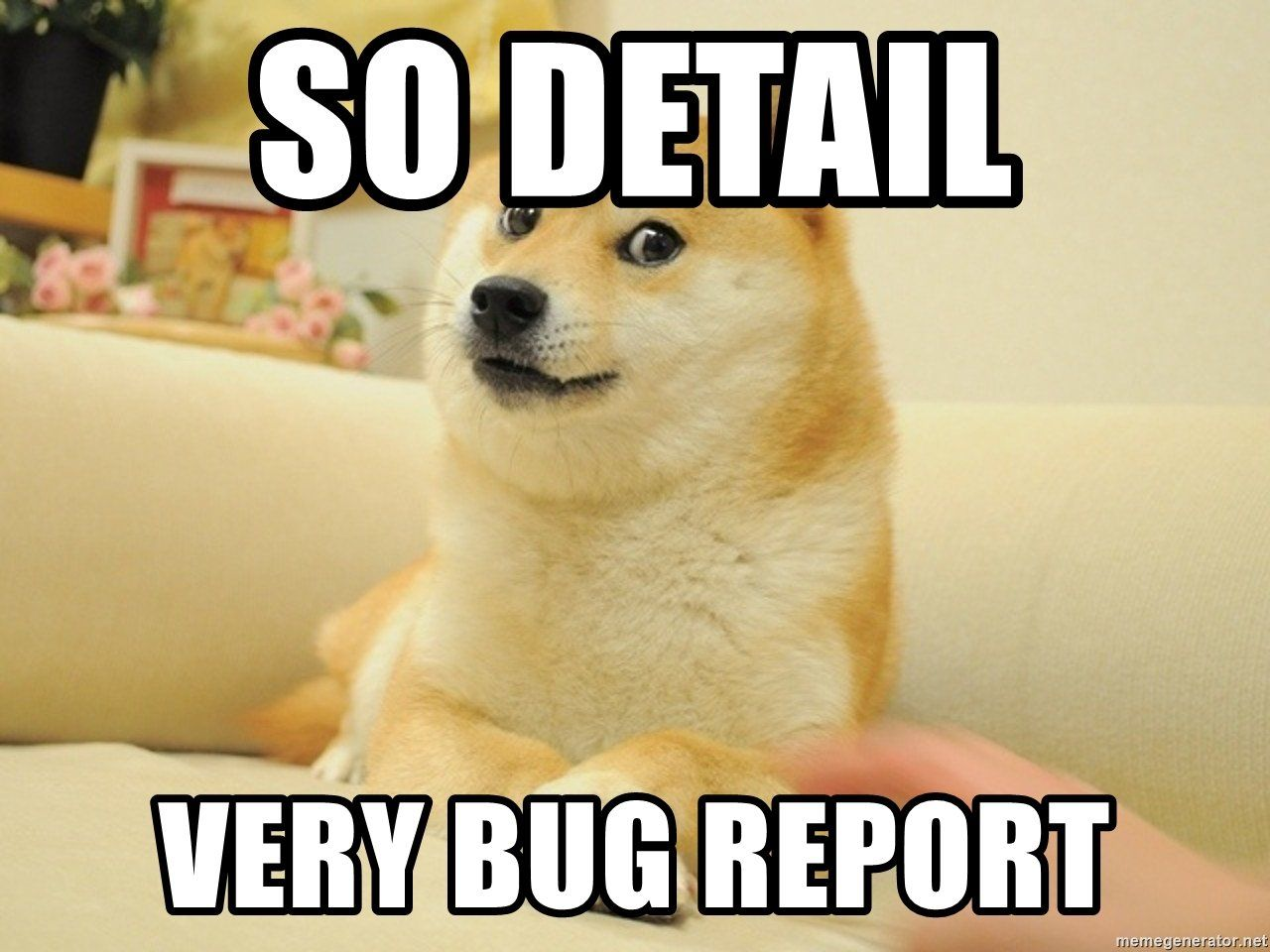so-detail-very-bug-report.jpg